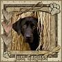 dcd-Just Gorjuss-In The Hay