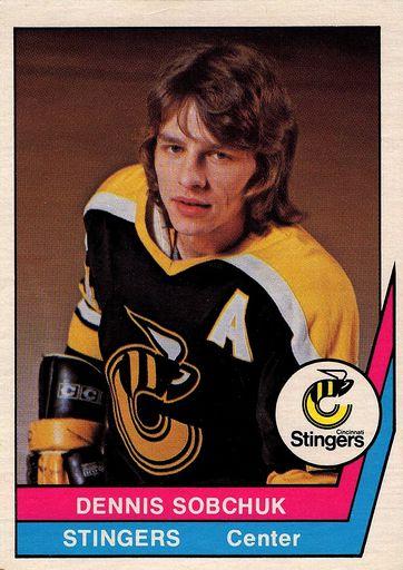 1977-78 O-Pee-Chee WHA #53 (1)