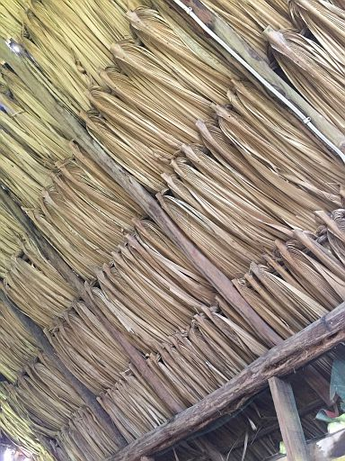 typical thatched roof