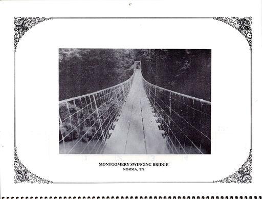 Montgomery Swinging Bridge