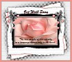 Get Well Soon-gailz-pink rose
