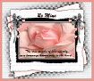 Be Mine-gailz-pink rose