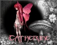 Catherine - TouchOfColour