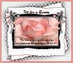 Fit for a Queen-gailz-pink rose-MC