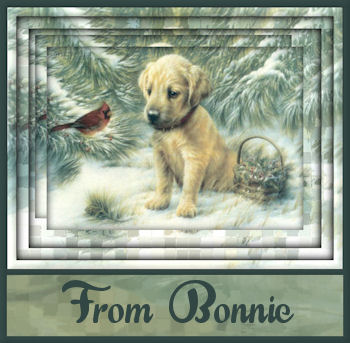 Winter10 8From Bonnie