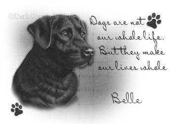 dcd-Belle-BestFriend.jpg