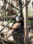 061125 Zoo 1054