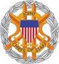 USA Army adge 10