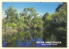 Brazil - AMAZONAS NS