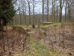 Ruine Iburg