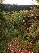 Römer-Hohlweg