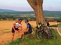 Ein Baum im Weserbergland :-)