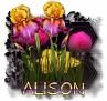Alison - 3094