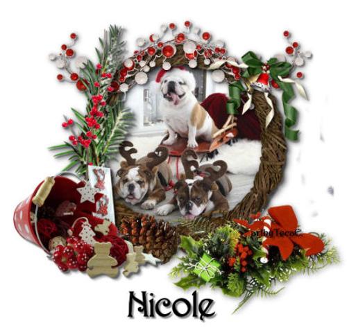 NicoleXmasDogs-vi