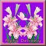 prettypinkflowerstjcAlpha Delivery