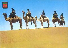 Morocco - M'Hamid Desert