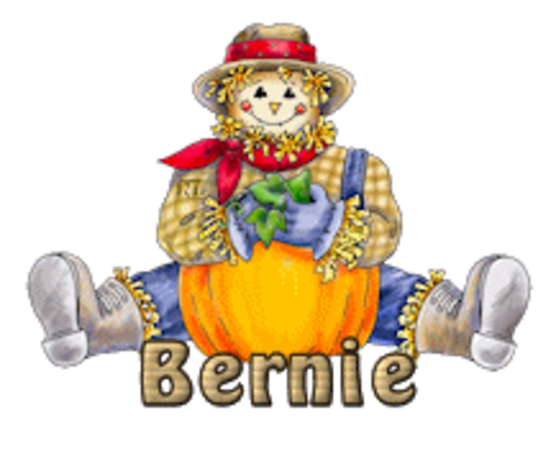 Bernie - AutumnScarecrowSitting