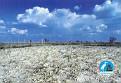 2001 NEUSIEDLERSEE NP 6 - Ferto NP