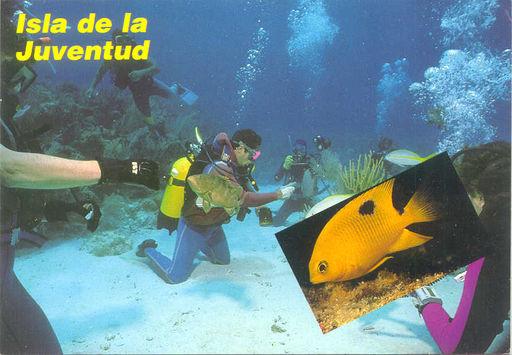 01- ISLA DE LA JUVENTUD - Isla de la Juventud