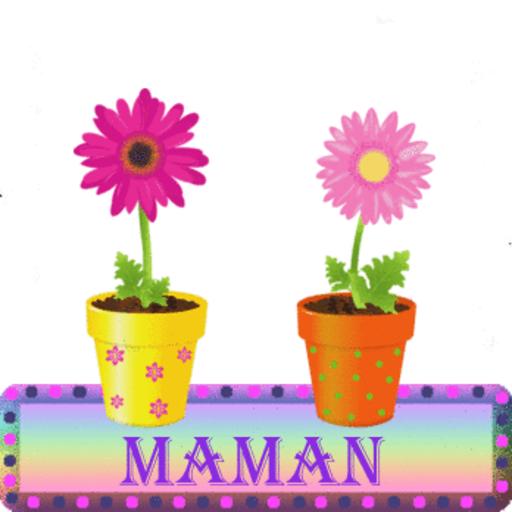 Maman - FlowerPot-Sandra-Sept 24, 2018