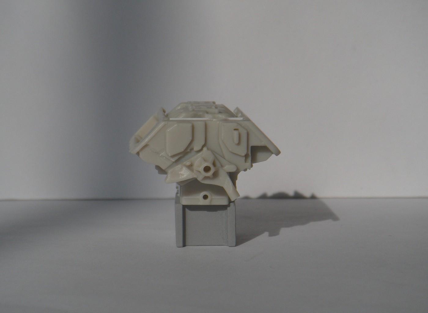 DSCN5956