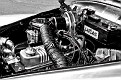 1955_Sunbeam_Alpine_std_processing_DSC 7703