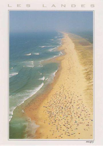 France - Les Landes Dunes
