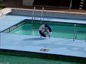 ZENITH Sun Marina Decks Santorini 20110413 015