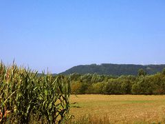 Godelheim