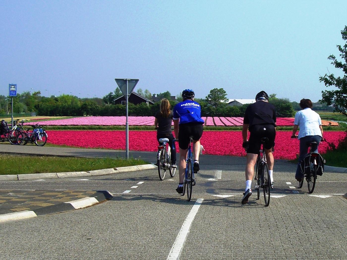 Cyclists in Noordwijkerhout