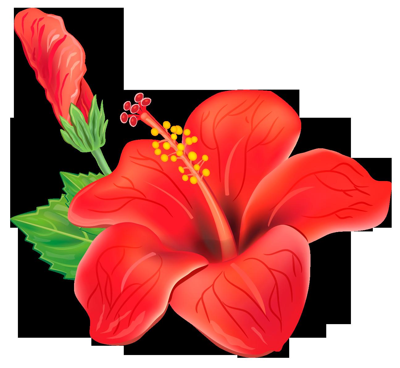Цветы для постеров в хорошем качестве с большим разрешением город, пронизанный