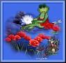 FloralFrog-doodle