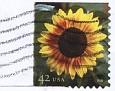 USA 2008 Sunflower