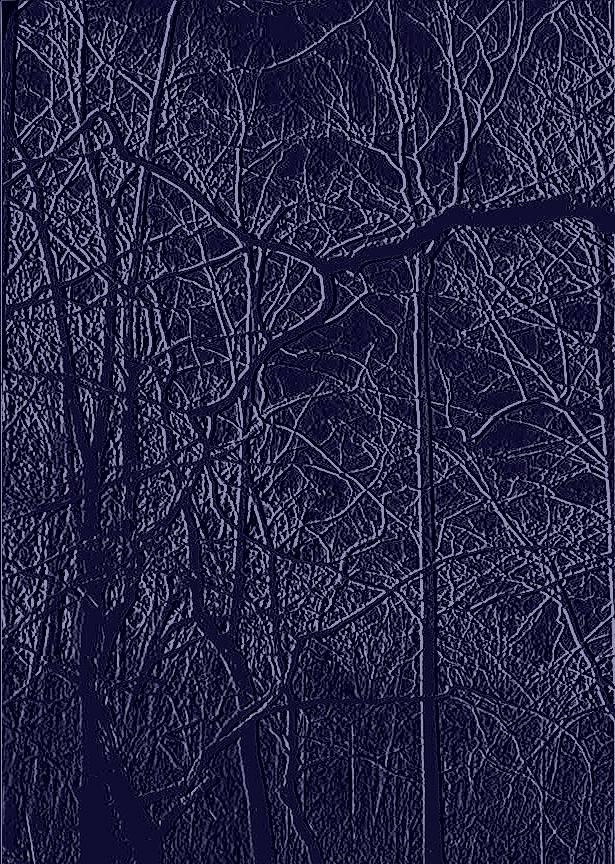 File0193d-emboss darken contrast50