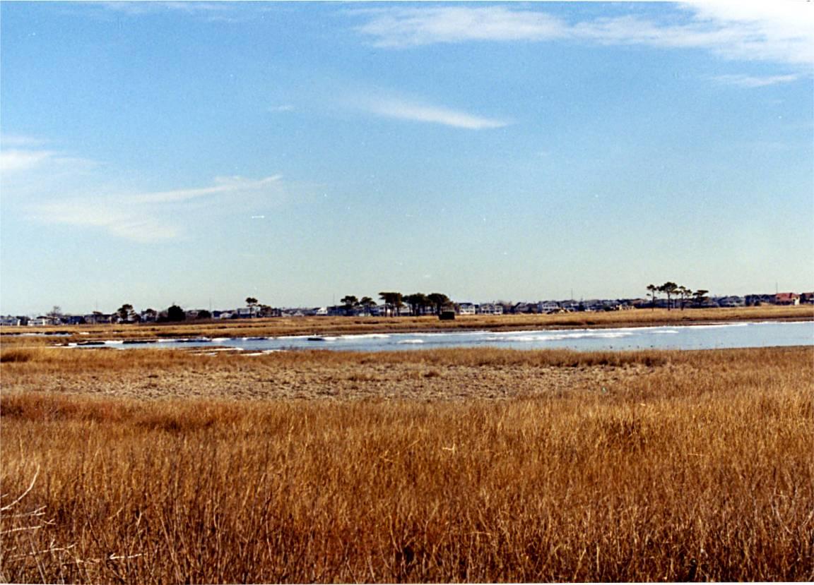 lagoon 1 17 04 -4
