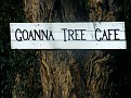 Goanna Tree Cafe