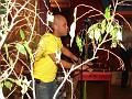 Micky @ Nuvo Café, Miami