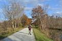 Marsh observation trail