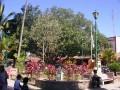 El Tuito. Main square