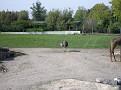 2007 Toledo Zoo 020