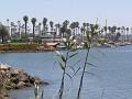 Ventura070207 034.jpg