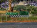 Wellington to Mumbil 004