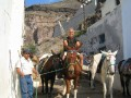 After walking up and down and up and down 500 steps,,,  I decide to take the donkey ride for 3 euro,,,  about 4 bucks...