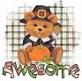 1Awesome-pilgrimbear2