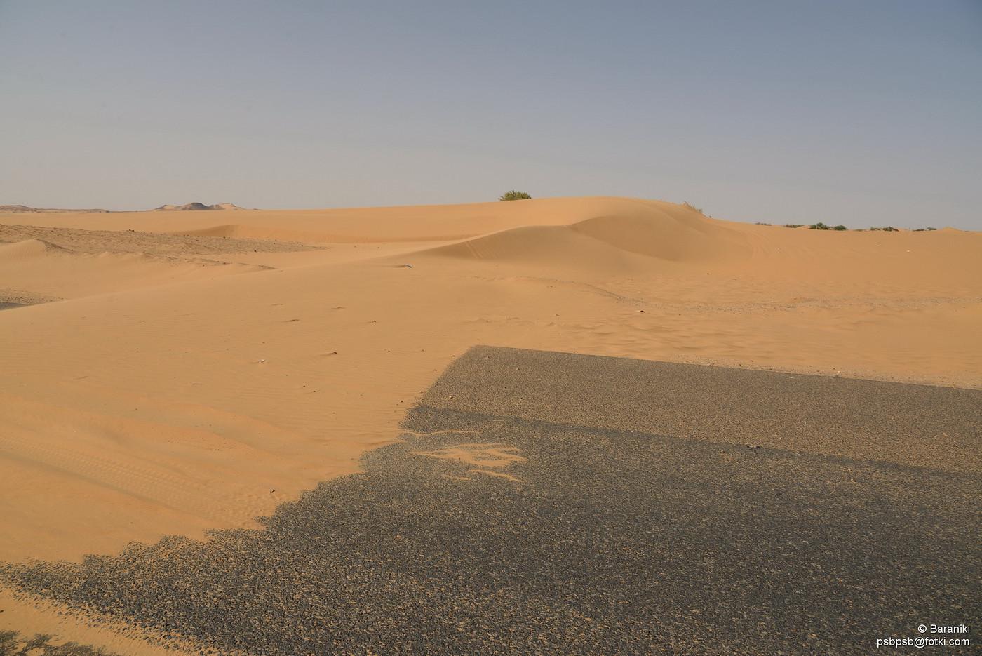 Pustynia przechodzi przez jezdnię
