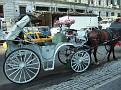 2011 08 26 06 Birgitta in New York