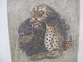 kreta cycladen 2575