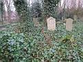 begraafplaatstevraag 007