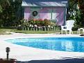 Lofty Fig's pool