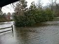 Neighborhood Flooding from Excessive Rains...